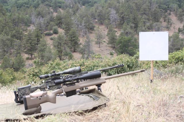 rogue shooting targets